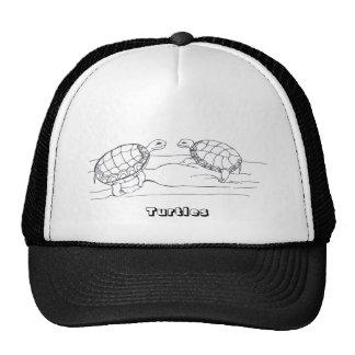 Turtles...Hat...
