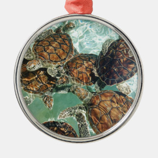 Turtles in Mexico (Kimberly Turnbull Photography) Metal Ornament