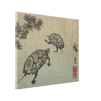 Turtles - Japanese Vintage Art - pre 1900s Canvas Print