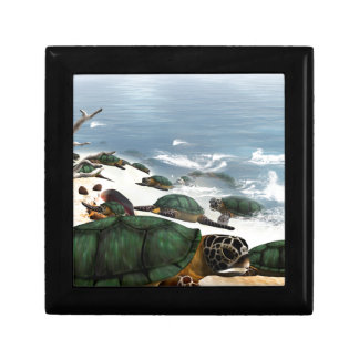 Turtles Jewelry Box