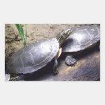 Turtles Rectangular Sticker