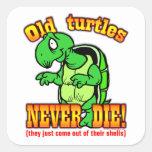 Turtles Square Stickers