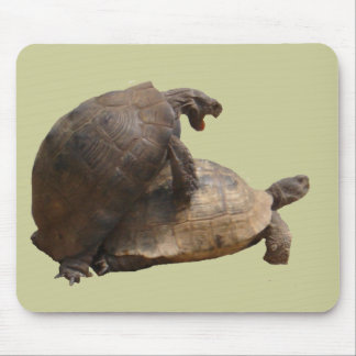Turtley Awesome Mouse Pad