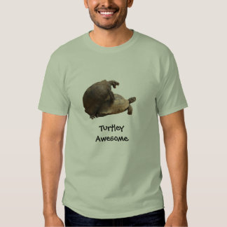 Turtley Awesome Tees