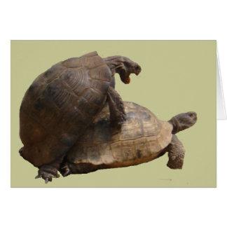 Turtley impresionante tarjeta de felicitación
