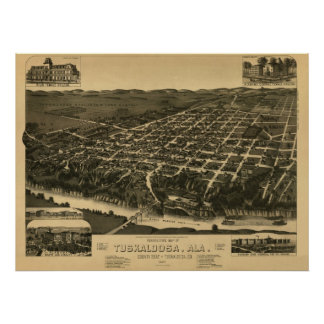 Tuscaloosa, AL 1887 Panoramic Map Birds Eye View Poster