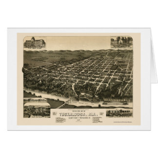 Tuscaloosa, AL Panoramic Map - 1887 Greeting Cards