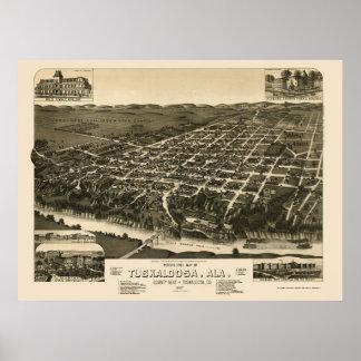 Tuscaloosa, AL Panoramic Map - 1887 Posters