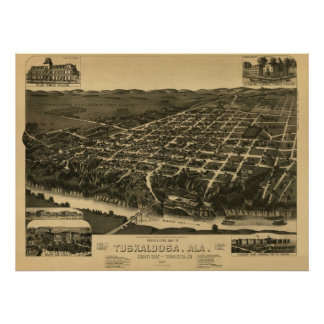 Tuscaloosa, AL Panoramic Map Vintage 1887 Poster