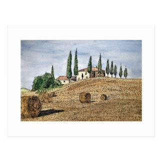 Tuscan Field Postcard