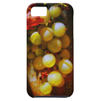 Tuscan grapes iPhone SE/5/5s case