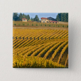 Tuscan-looking Black Walnut Inn above the Pinback Button