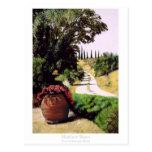 Tuscan Summer Road Postcards