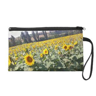 Tuscan Sunflowers Wristlet Purse