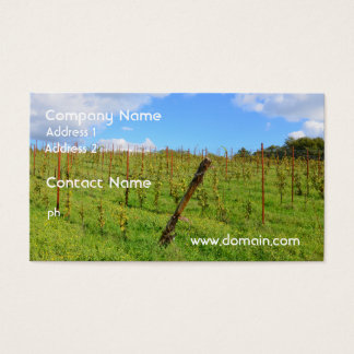 Tuscan Vineyard Business Card