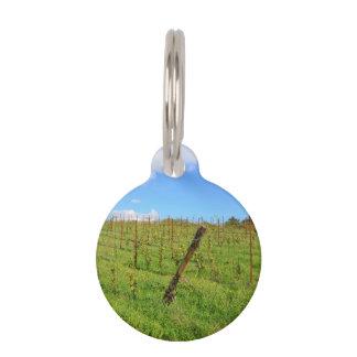 Tuscan Vineyard Pet Name Tag