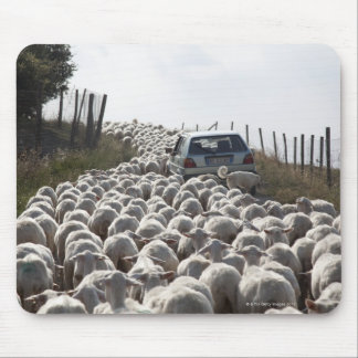 tuscany farmland road, car blocked by herd of mouse pad