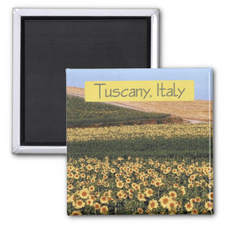 Tuscany Italy Travel Souvenir Photo Fridge Magnet