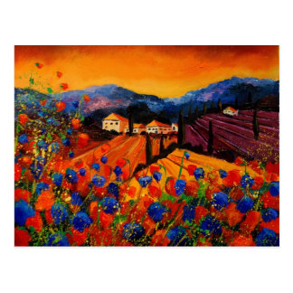 tuscany poppies 45 postcard