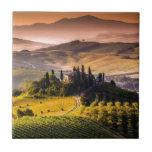 Tuscany Small Square Tile