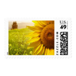 Tuscany Sunflowers Stamps