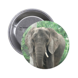 Tusked Elephant  Button