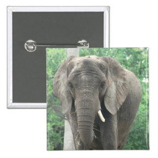 Tusked Elephant  Pin
