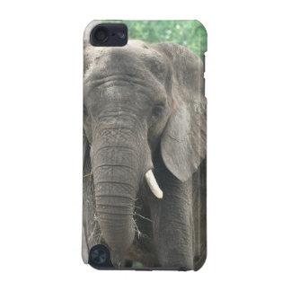 Tusked Elephants iTouch Case iPod Touch 5G Cases