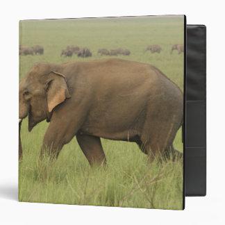 Tusker and its herd,Corbett National Park, Vinyl Binders