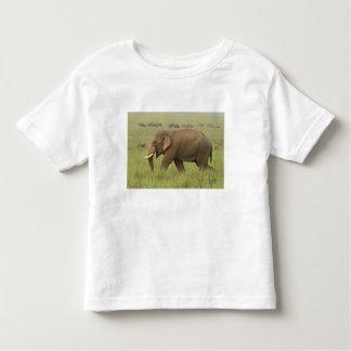 Tusker and its herd,Corbett National Park, Tee Shirt