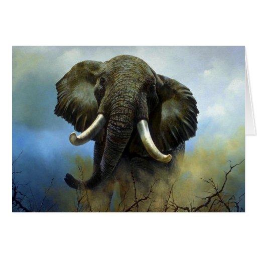 Tusks, Elephants Greeting Card