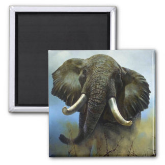 Tusks, Elephants Magnets