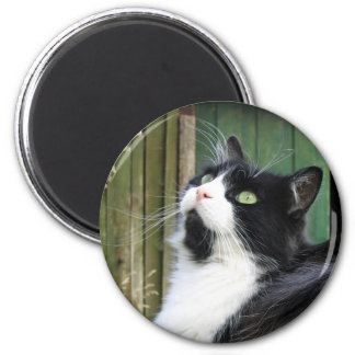 Tux - 2¼ Inch Round Magnet