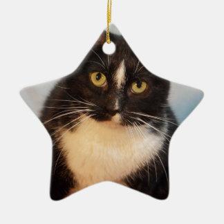 Tux Ceramic Ornament