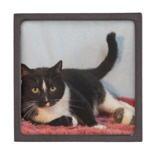 Tux Gift Box