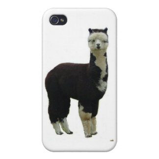 Tuxedo alpaca iPhone 4 cases
