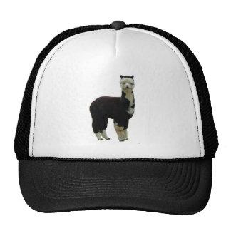 Tuxedo Alpaca Trucker Hat