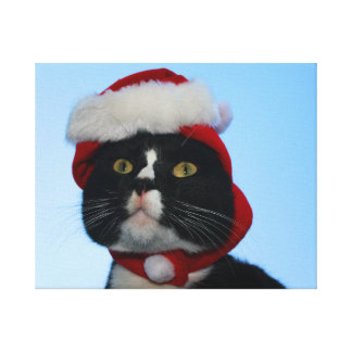 Tuxedo black and white cat with santa hat on stretched canvas print