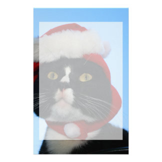 Tuxedo black and white cat with santa hat on stationery