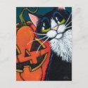 Tuxedo Cat and Smiling Pumpkin Lantern Postcard