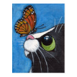 Tuxedo Cat and Viceroy Butterfly Post Cards