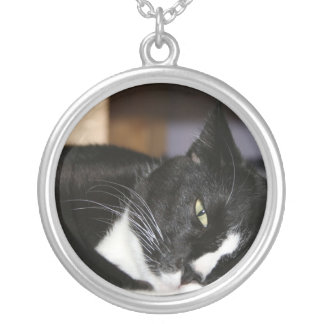 tuxedo cat black and white lying down one eye open silver plated necklace