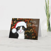 Tuxedo Cat Christmas Holiday Card