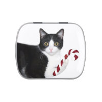 Tuxedo cat Christmas Jelly Belly Candy Tin