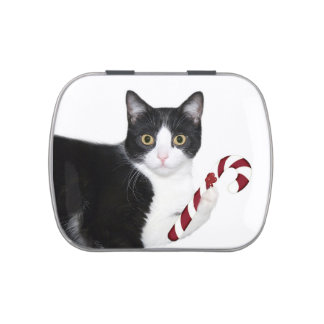 Tuxedo cat Christmas Jelly Belly Candy Tins