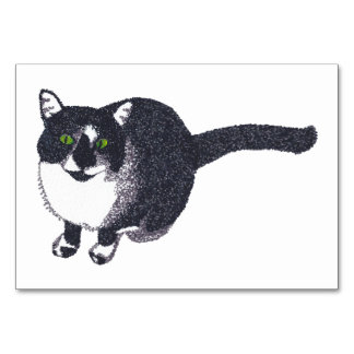 Tuxedo Cat Custom Flashcards Table Card