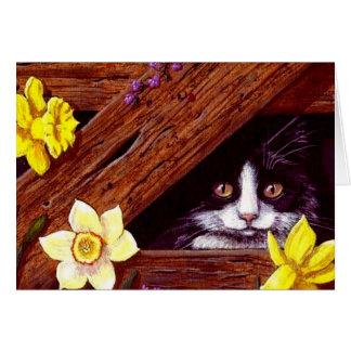 Tuxedo Cat Daffodils Art Creationarts Card