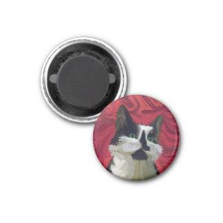 Tuxedo Cat Hits the Red Carpet Fridge Magnets