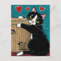 Tuxedo Cat in Love with Box Postcard