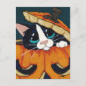 Tuxedo Cat in Pumpkin Halloween Postcard